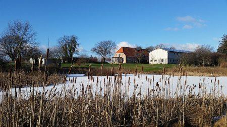 Lindhöft Eichenhof im Winter