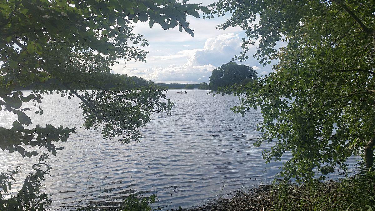 am Plöner See